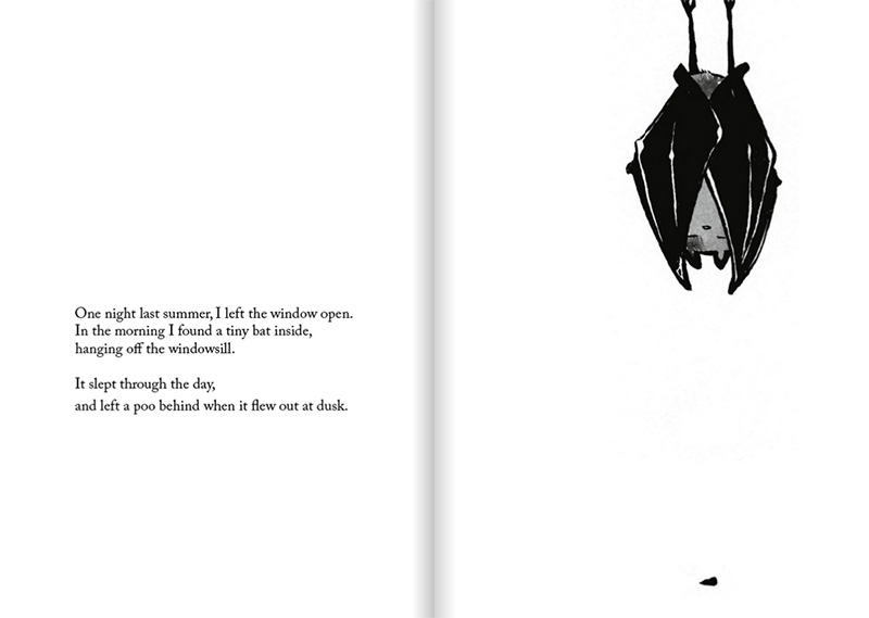 The Window - sleeping bat and little poo spread - Cat Byrne and Tom Burleigh