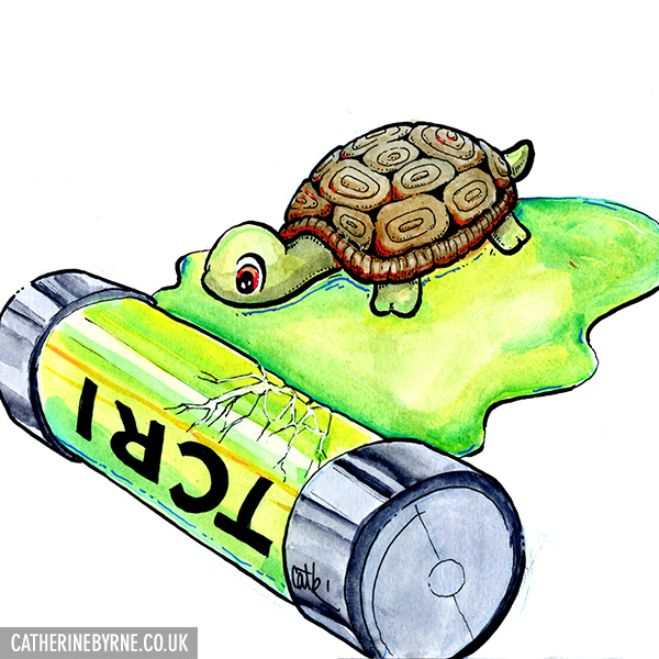 TCRI mutagen canister baby turtle sketch by Cat Byrne