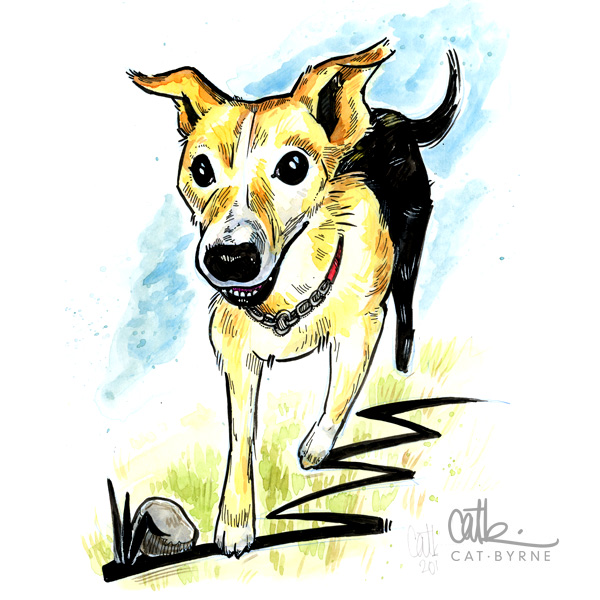Poppy dog portrait commission by Cat Byrne in Todmorden, in ink and watercolour